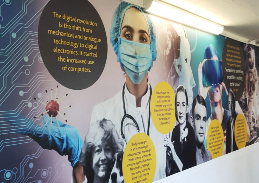 Kings Lynn Academy's new science wall art goes from particles to petri dishes